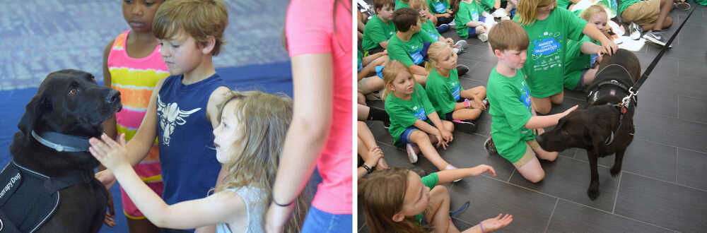 Bonding and Training Program, therapy dogs a hit among many Dyersburg students, faculty